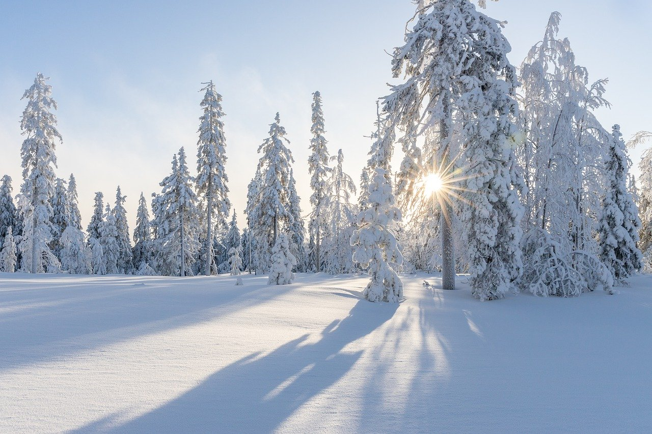 """Today it is the """"Half Snow Day"""" in Scandinavia"""